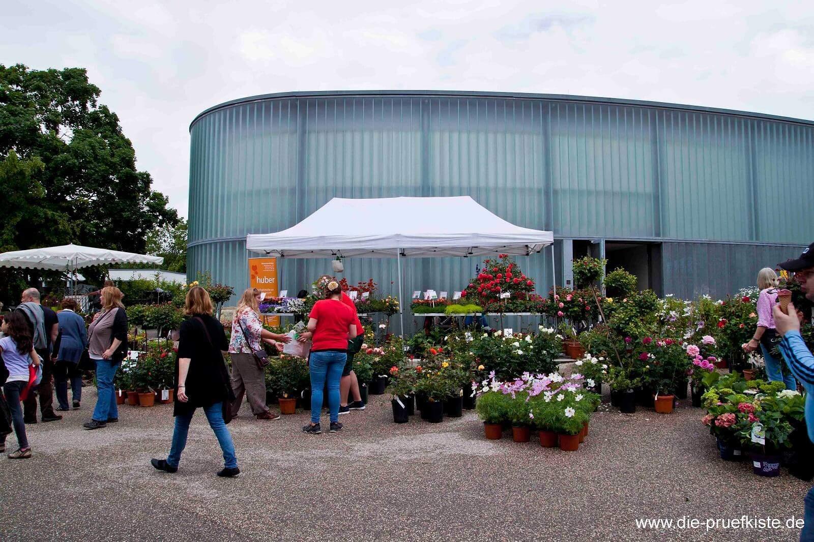Rosenmarkt_Waiblingen3