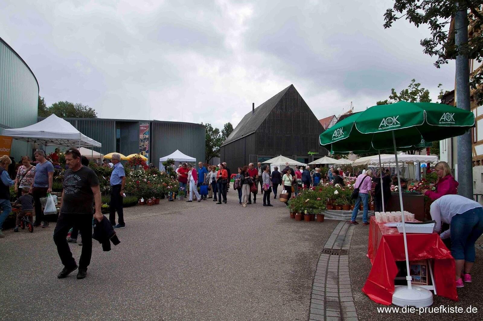 Rosenmarkt_Waiblingen4