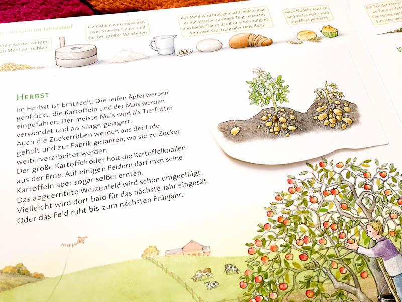 das-grosse-bauernhofbuch-carlsen-verlag-tanjas-everyday-blog-2-von-5