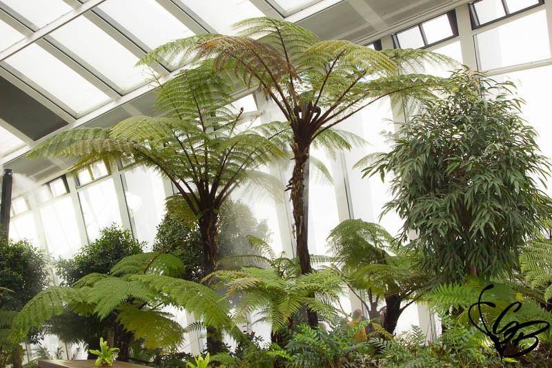SKY Garden London_Tanja's Everyday Blog