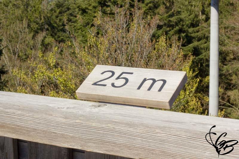 Waldwipfelweg Pfad 25m hoch