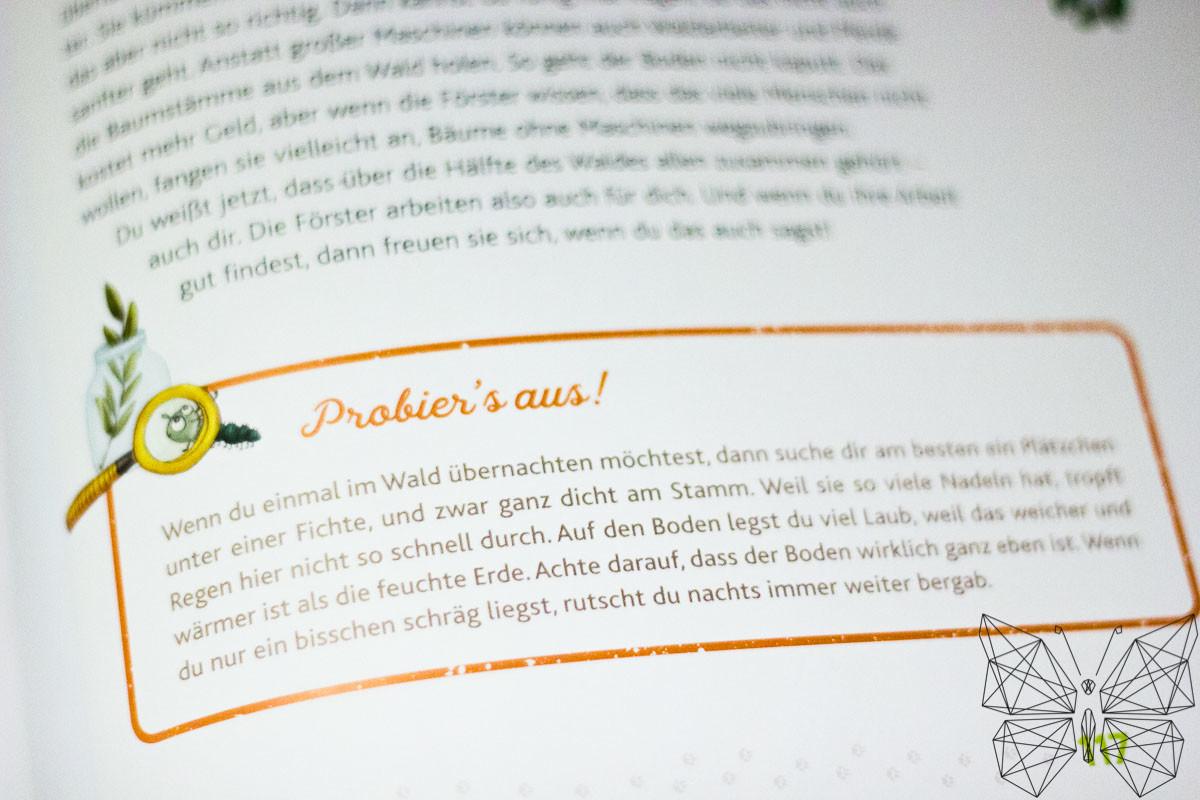 Unsere Leseecke: Hörst du die Bäume sprechen? Von Peter Wohlleben - Tanja's Everyday Blog