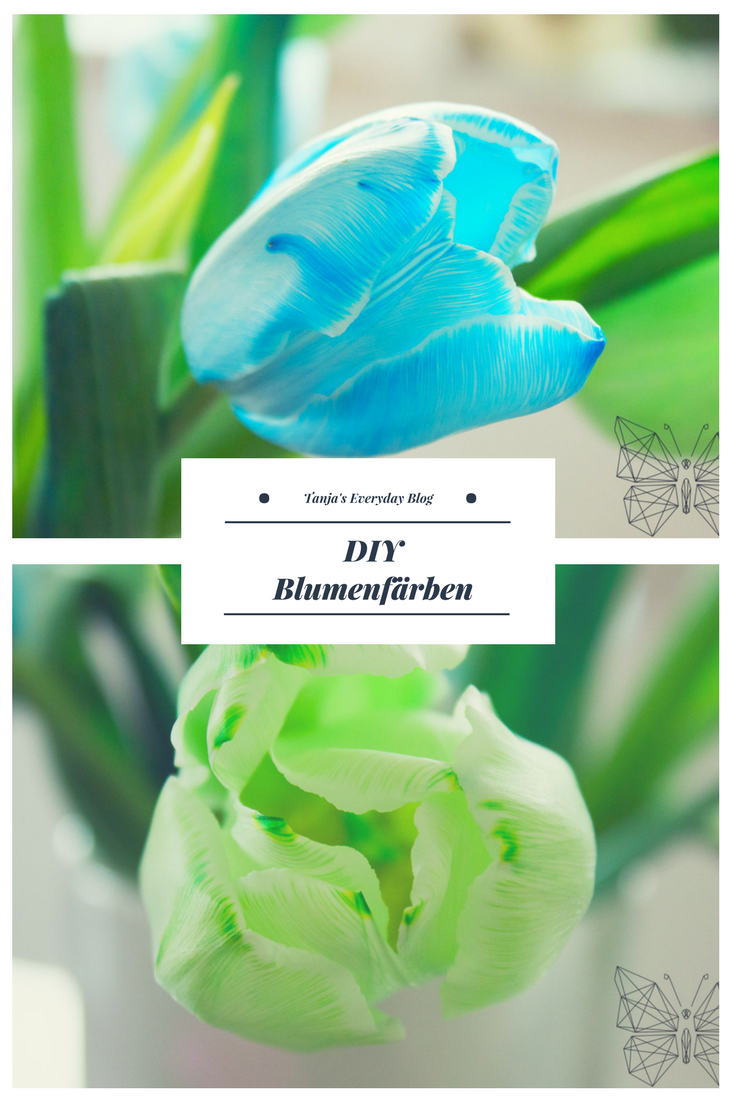 DIY Blumenfärben Tanja's Everyday Blog
