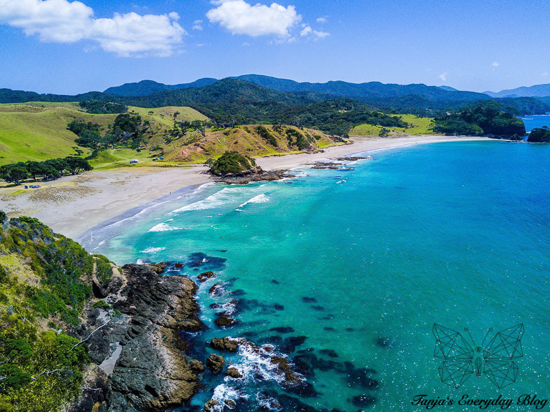 New Zealand Experiences
